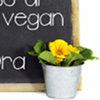 Corso a Torino di Cucina Vegan