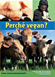 Perche' vegan?