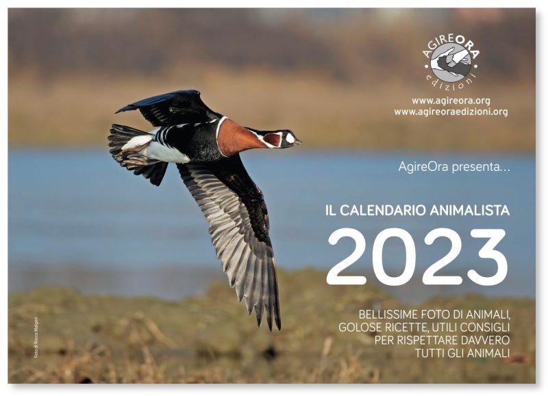 Calendario Bellissime 2021 Calendario AgireOra 2021 da parete [AgireOra Edizioni]
