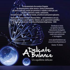 DVD - Un equilibrio delicato