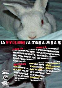 Locandina 'La vivisezione fa male a lui e a te'