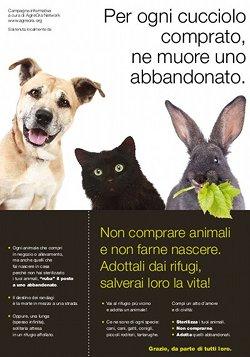 Locandina 'Non comprare animali'