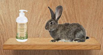 Bottiglia di shampoo e coniglio su una mensola