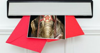 Un volantino contro il circo in una buca delle lettere